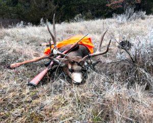 Hunter Tracker Big Buck